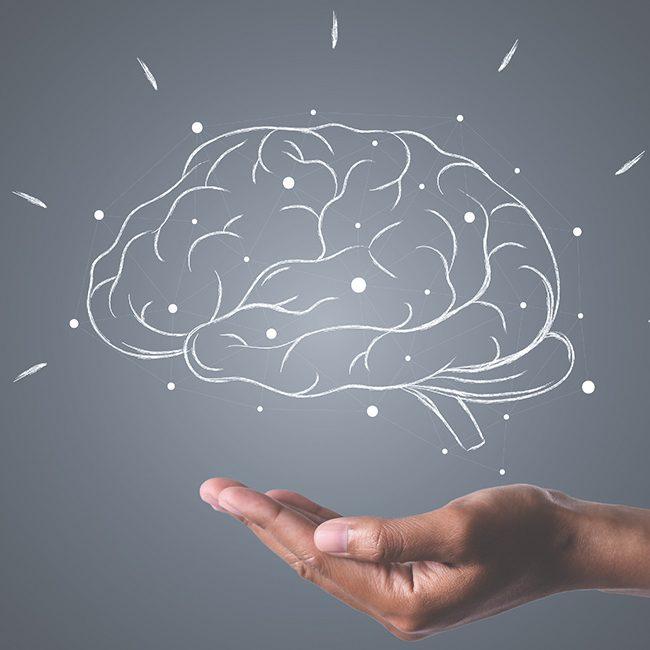 neuronauka_obrazovanje